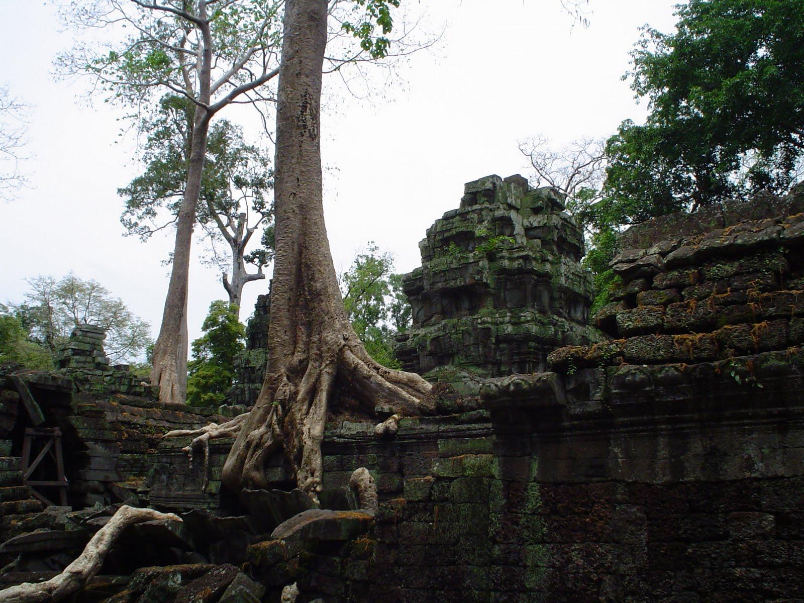 Réaliser sa visite cambodge sur mesure